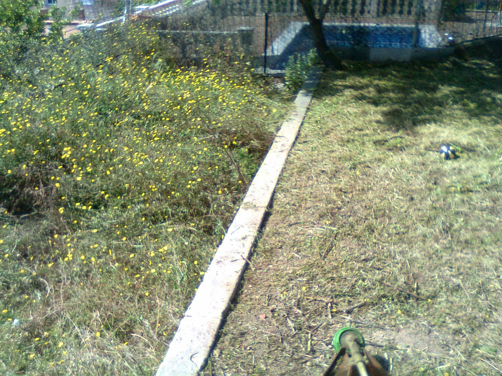 Serviciosdejardineriabasica oferta primavera tarifa for Jardineria barata barcelona