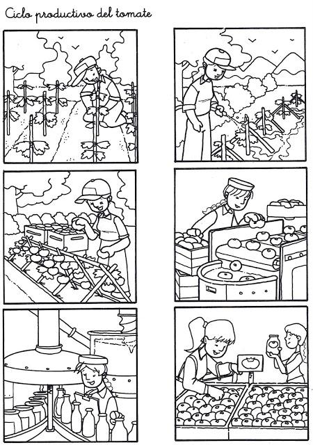 Circuito Productivo Del Pan : Ciclo productivo del pan imagui