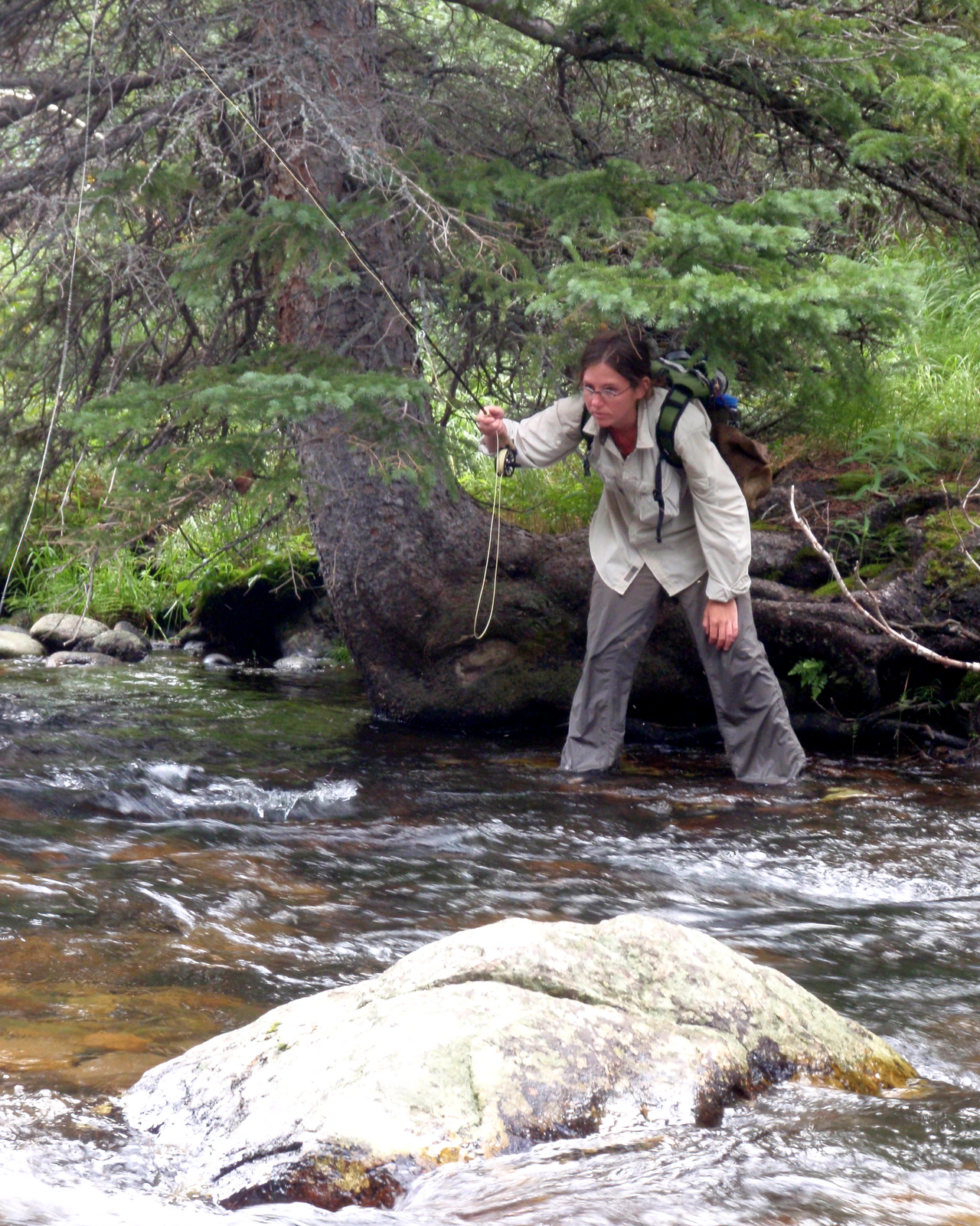 Colorado fly fishing reports january 2010 for Colorado fly fishing