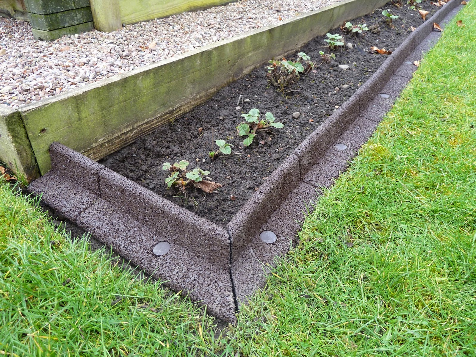 creating a lawn border for my strawberry bed review of