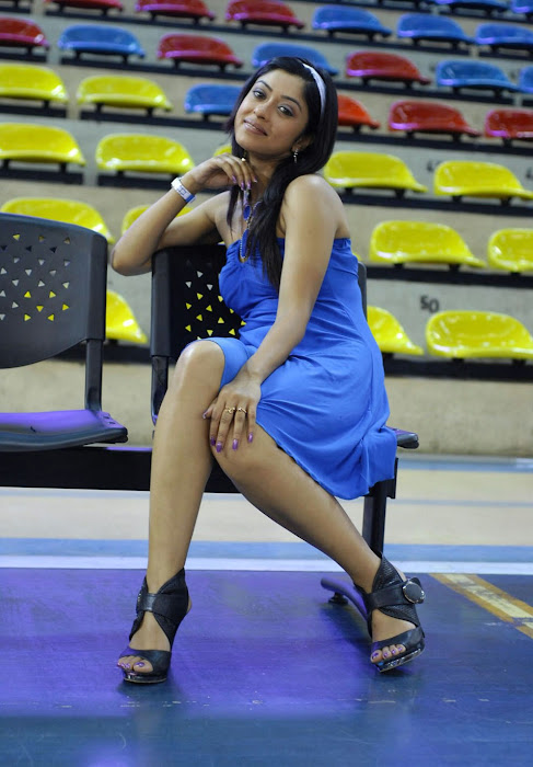 payal gosh , payal gosh spicy hot images