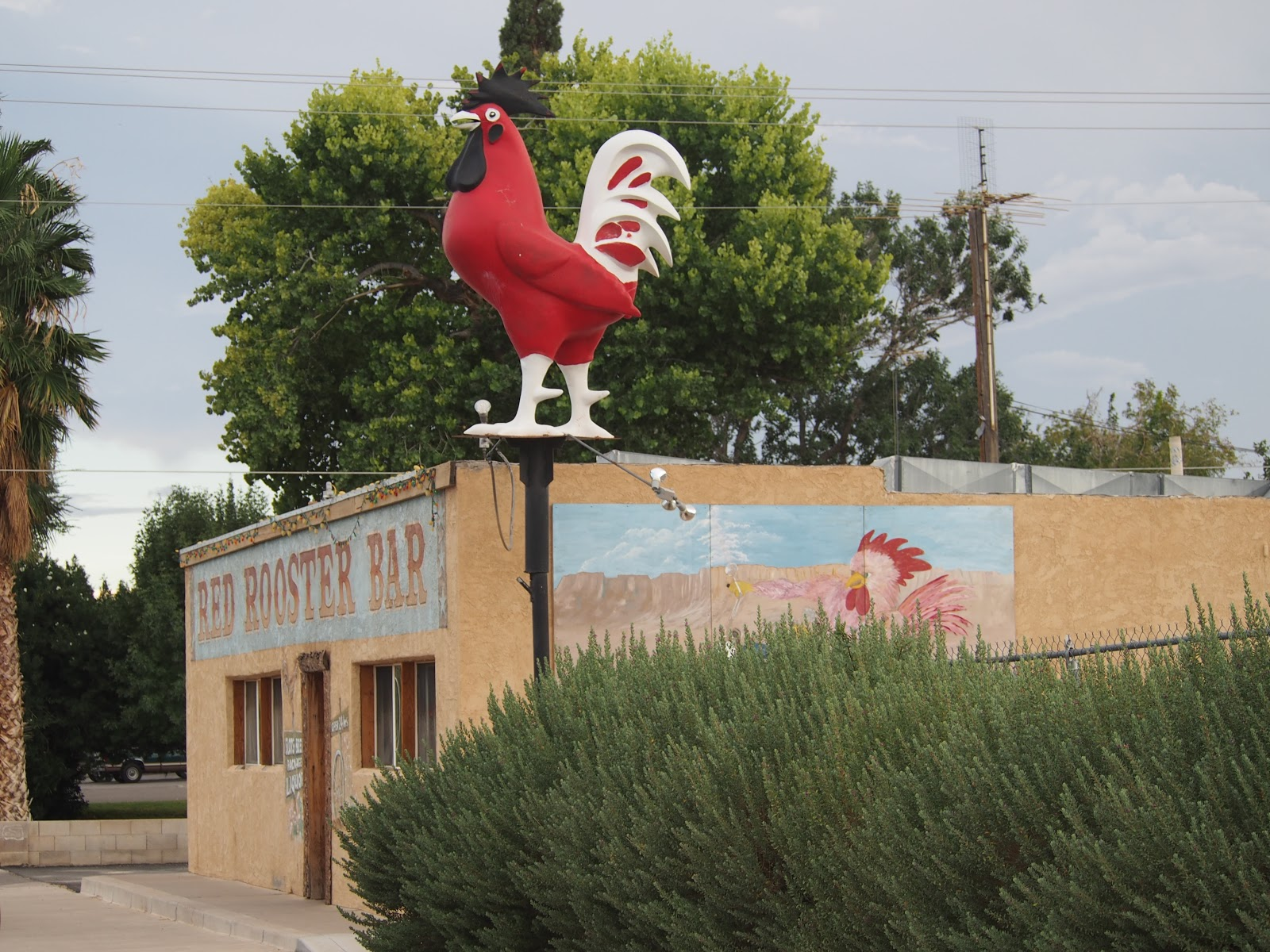The Rooster Bar, #overton #theroosterbar #nevada #roadtrip #ontheroadagain 2014