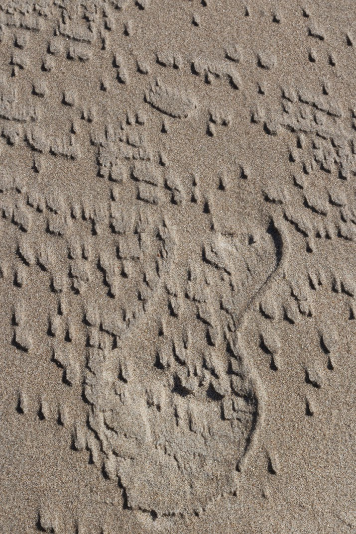 pocked male shoeprint in sand