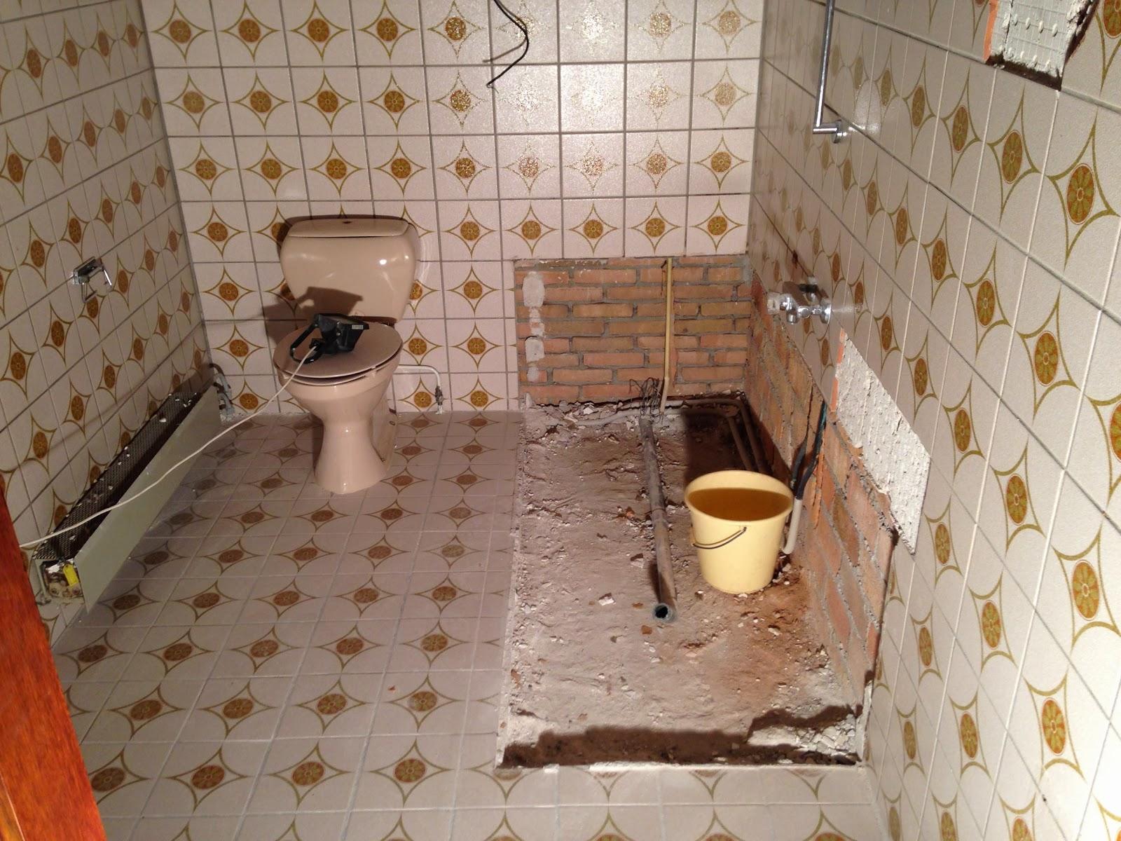 De Grote Verbouwing: Badkamer en plafonds