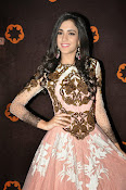 Kanika Kapoor glamorous photos-thumbnail-8