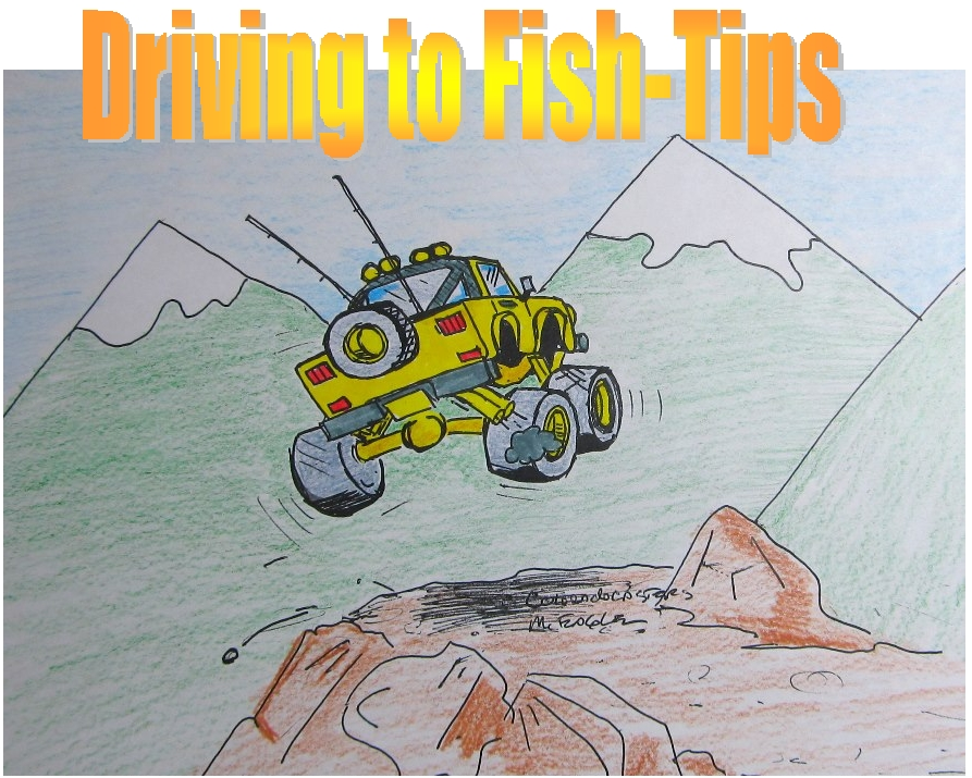 Coloradocasters mattsabasser driving to fish tips why for Why fish is bad for you