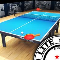 Pro Arena Table Tennis LITE