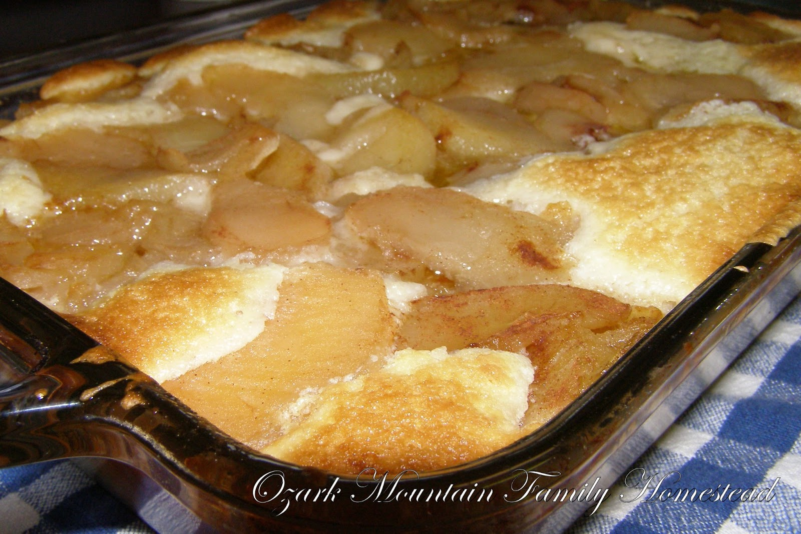 Ozark Mountain Family Homestead: Easy Apple Cobbler