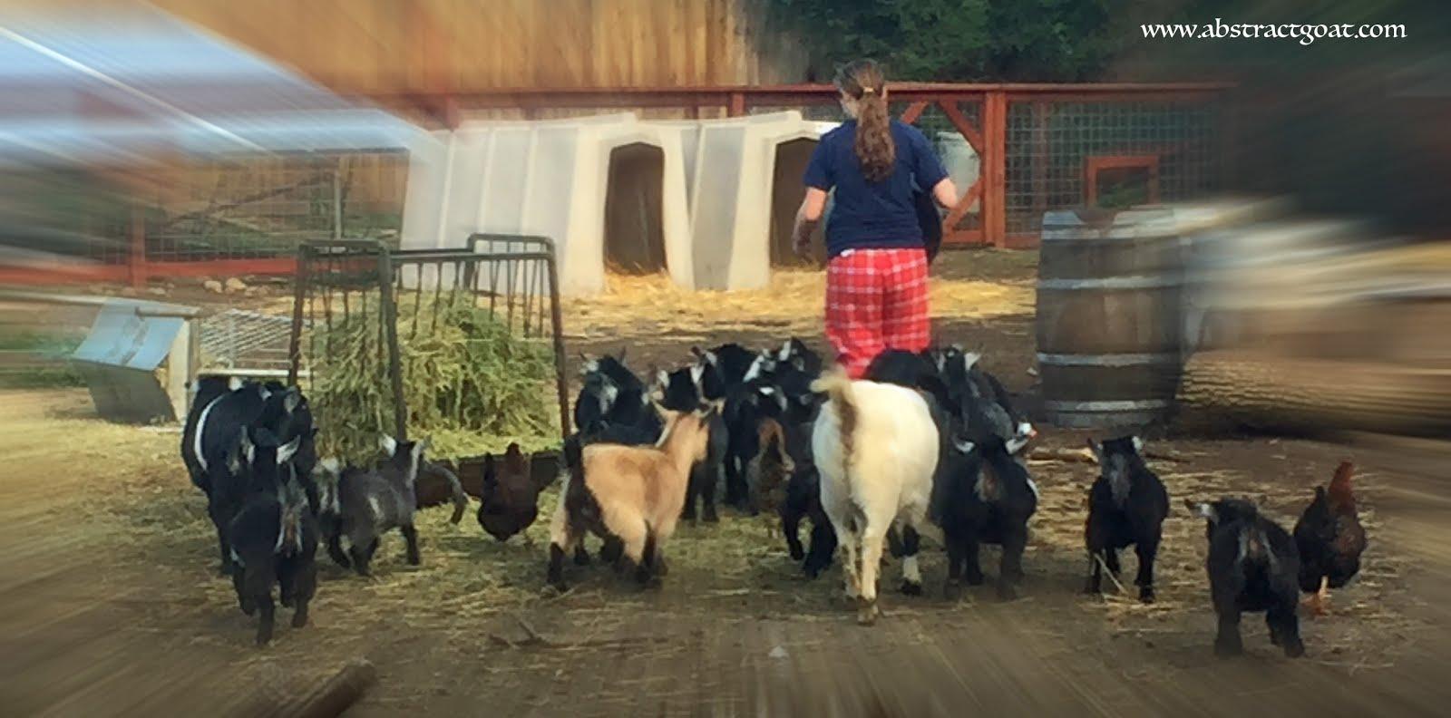 Goat Mogul