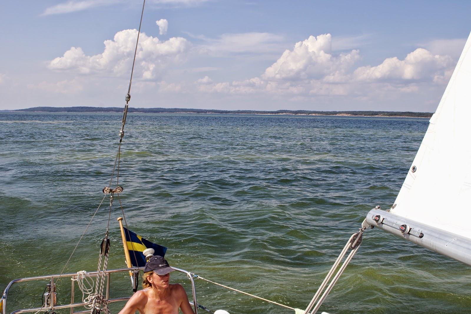 Lotta Löfwall seglar genom ett algblommande hav