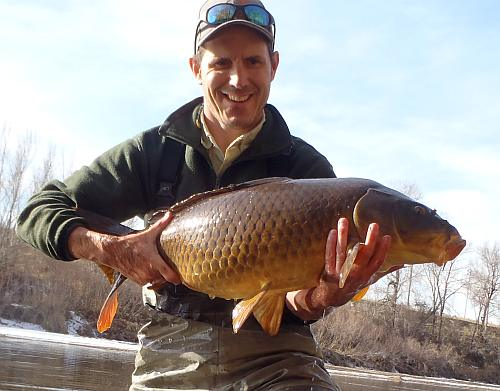 Fly carpin carp on the fly reports breaking my personal best dsp carp with the last fish of 2012 was really cool doing it again with my first fish of 2013 was just crazy publicscrutiny Images