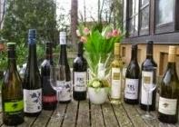 #Belvini - Weinpaket 9 Flaschen Wein. Davon 7 Weine aus Östereich und 2 Weine aus Ungarn