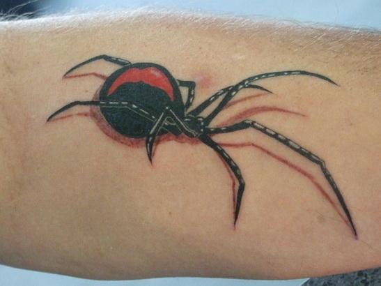 Image Spider
