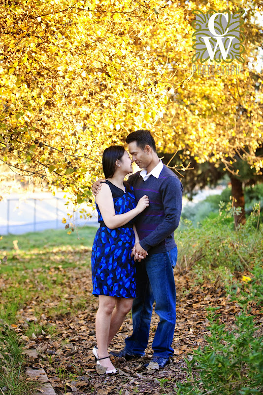 engagement portraits fall leaves lakewood ca