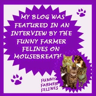 Our Interview on Mousebreath!