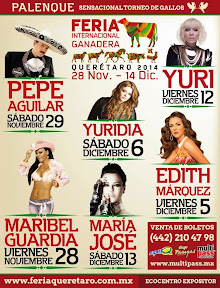 Feria Querétaro 2014 Artistas
