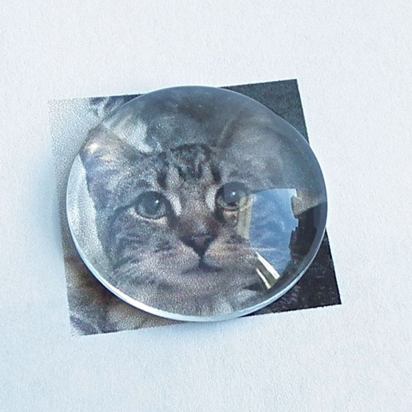 Photo glass disc over image of kitty