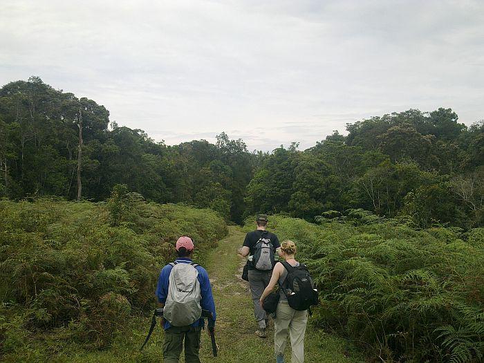 trekking nella giungla del Borneo - Kelabit Highlands