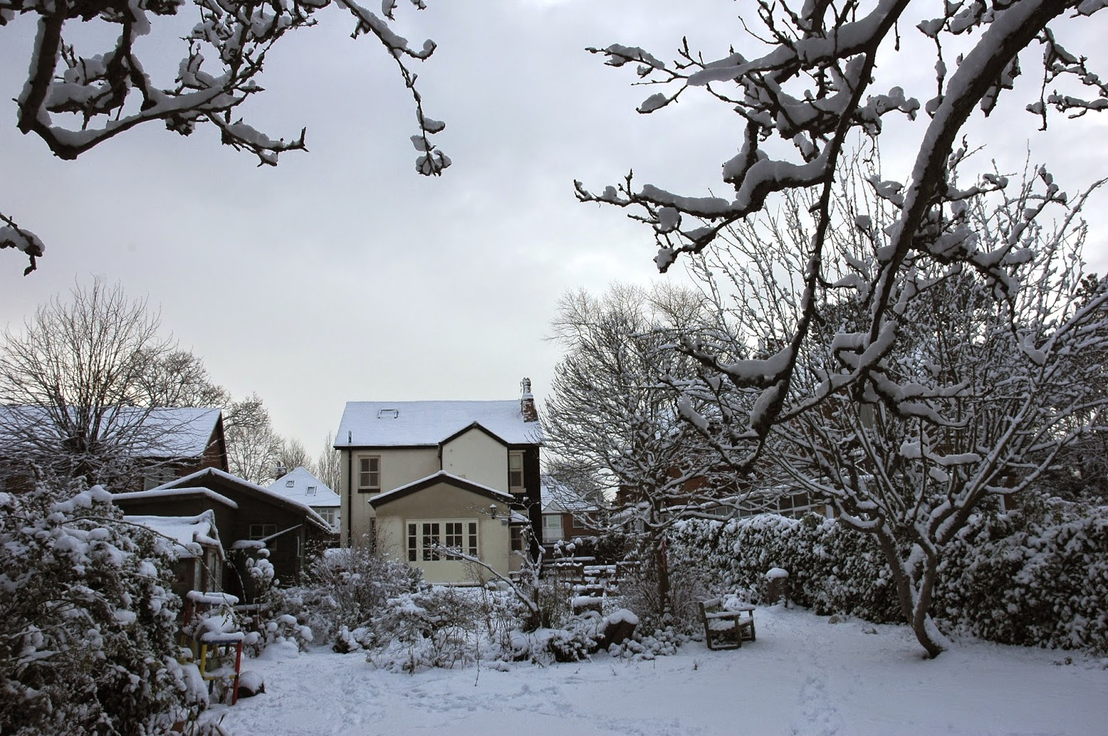 The Tuckshop Garden in winter