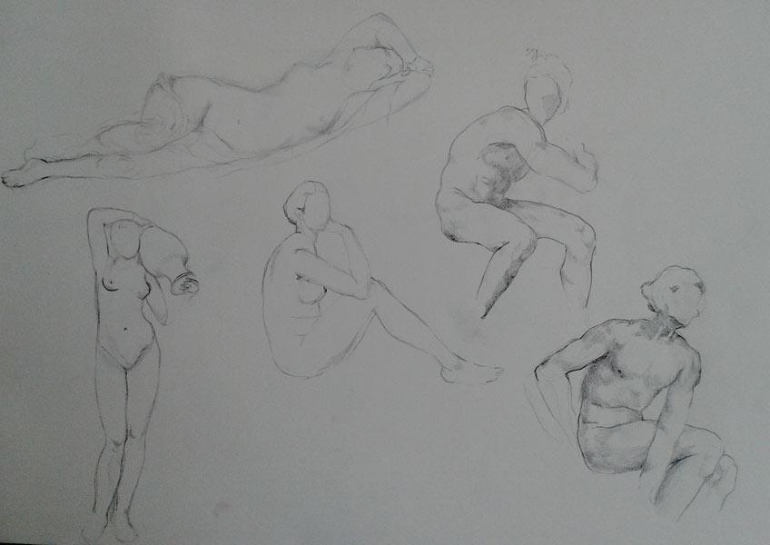 apuntes anatomicos