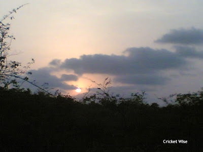 Sunset, jungle adventure