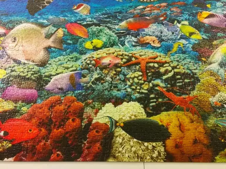 Ravensburger Under the Sea 5000 piece jigsaw puzzle close-up 5