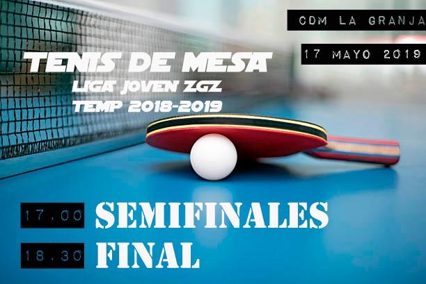 Semisfinales y Final Ping-Pong