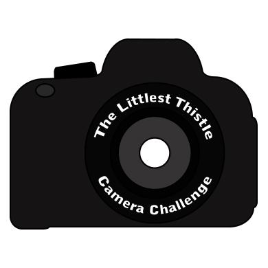 http://4.bp.blogspot.com/-uTgsMAVWAgg/VLLm_aSKM3I/AAAAAAAAKK4/1OTg13w-y5o/s1600/Camera-Challenge.jpg