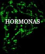 """ACCESO DIRECTO A """"HORMONAS"""""""