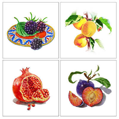 fruits berries paintings