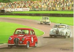 CLASSICOS in race 1