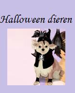 Verborgen winkel: Halloween