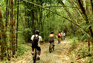 Bali Countryside Cycling Tour - bamboo forest cycling track.jpg