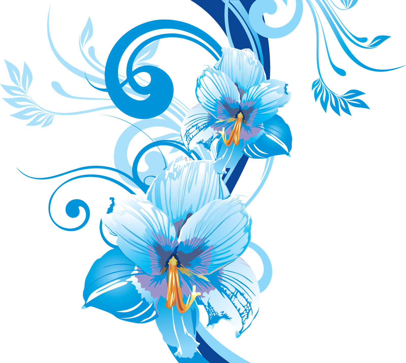 Frames & png: flower vectors various (16)