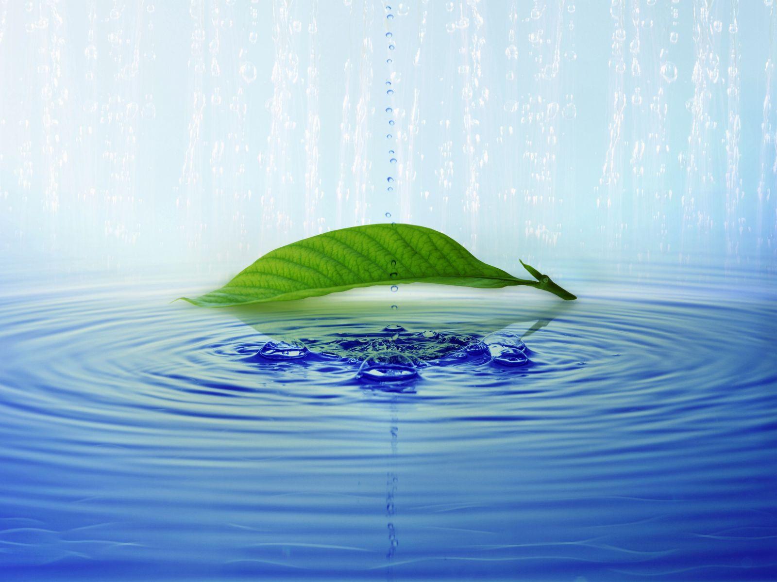 http://4.bp.blogspot.com/-uUSCK0-Jlag/TVl6aVsz0YI/AAAAAAAAAX8/3TdQvN9patE/s1600/natural-wallpaper.jpg
