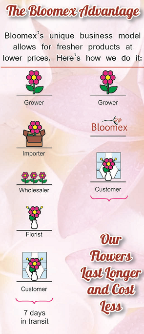 bloomex-business-model-canada-australia
