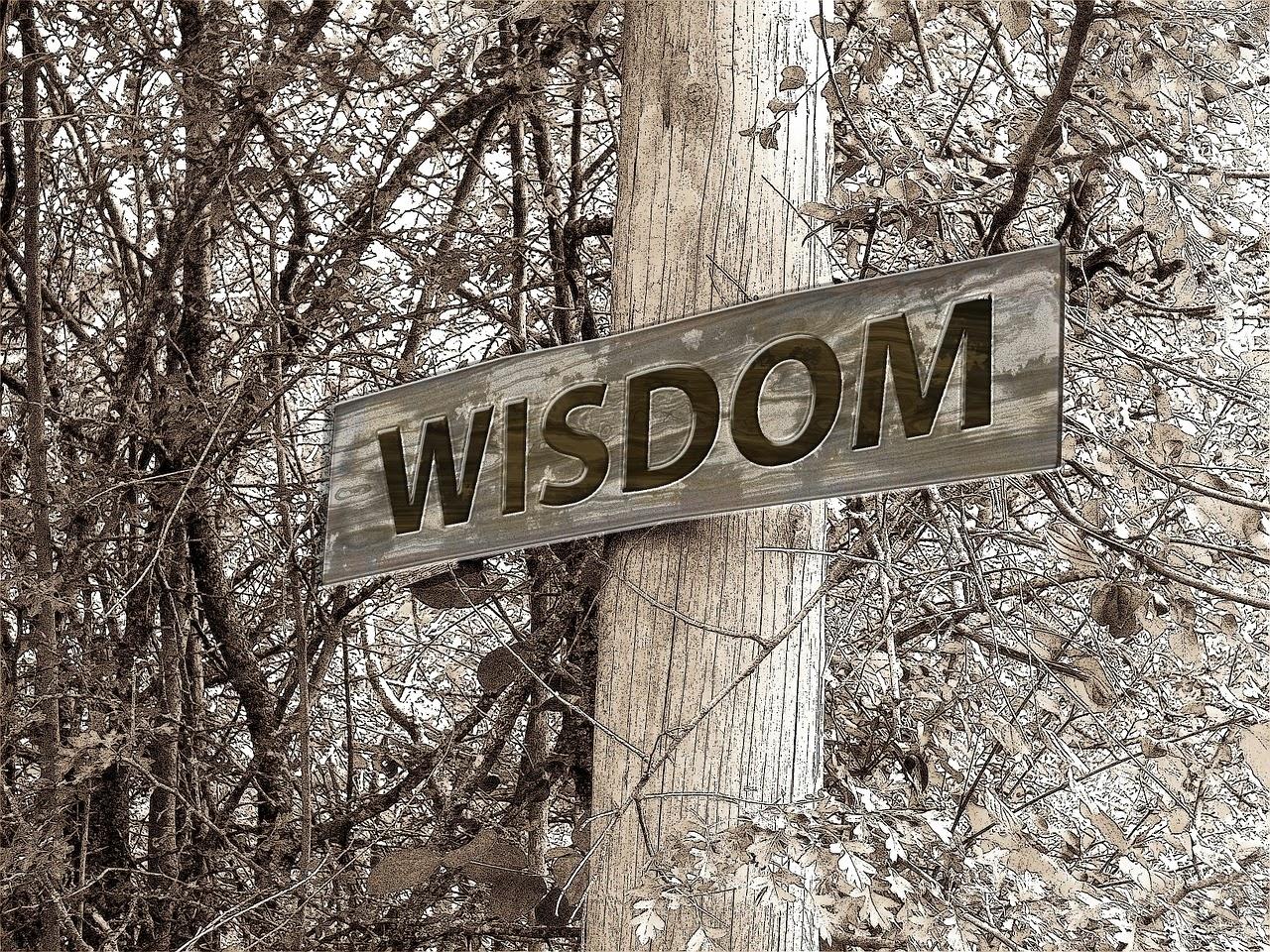 asking for wisdom/myclassacts.blogspot.com