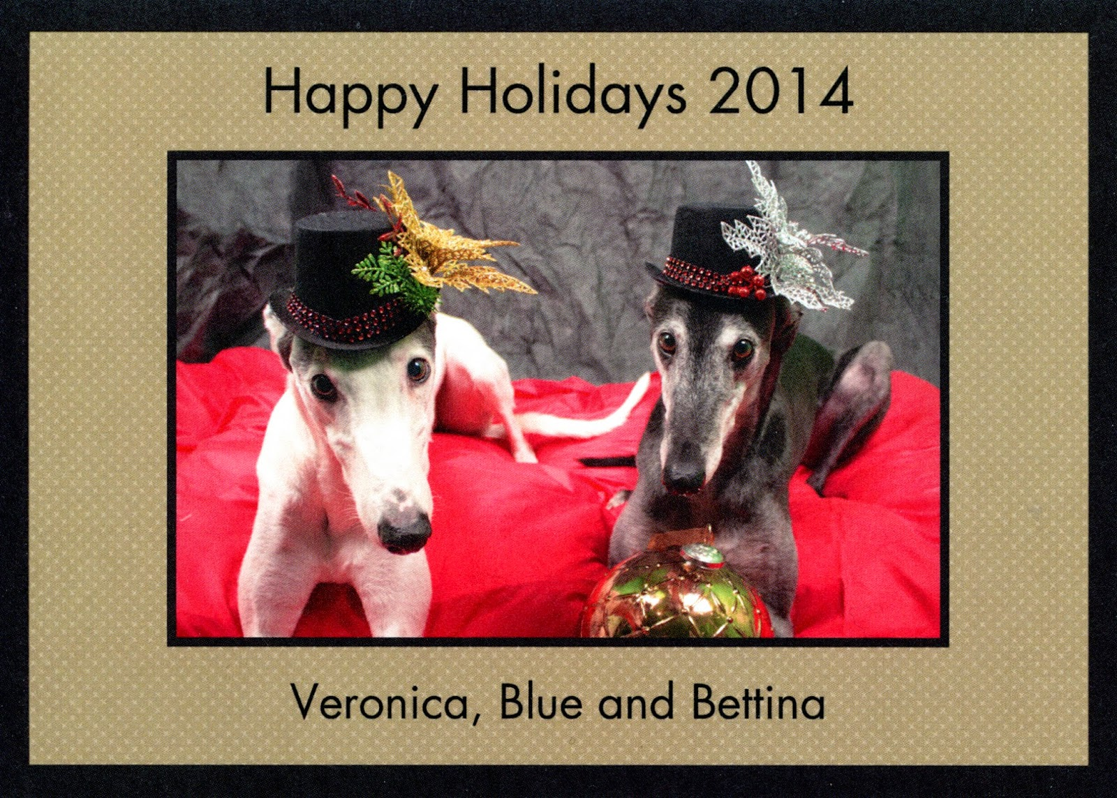 Happy Holidays from Blue and Bettina Greyhound