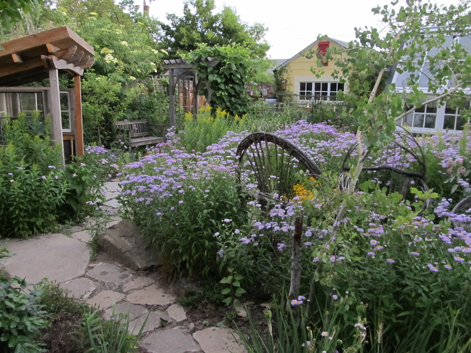 Wild Backyard Ideas : Montana Wildlife Gardener 2012 Garden Projects