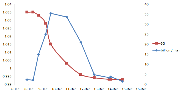 yeast fermentation rates