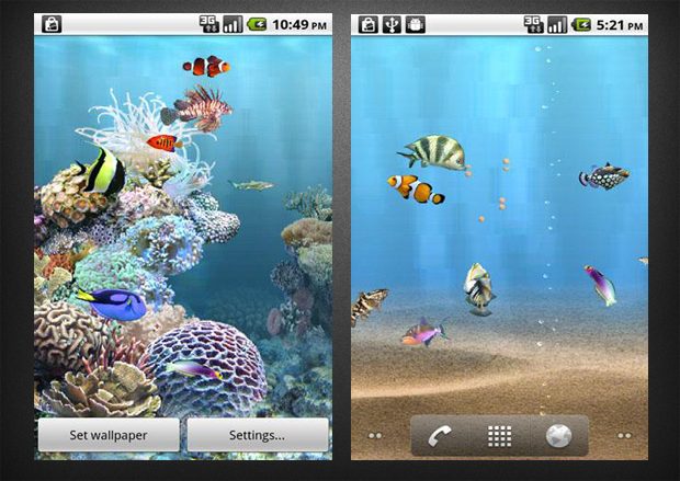 Download Anipet Koi Premium HD Live Wallpaper free for