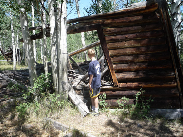 Meemo in the mountains thoughts on family history and pug for Potato creek cabins