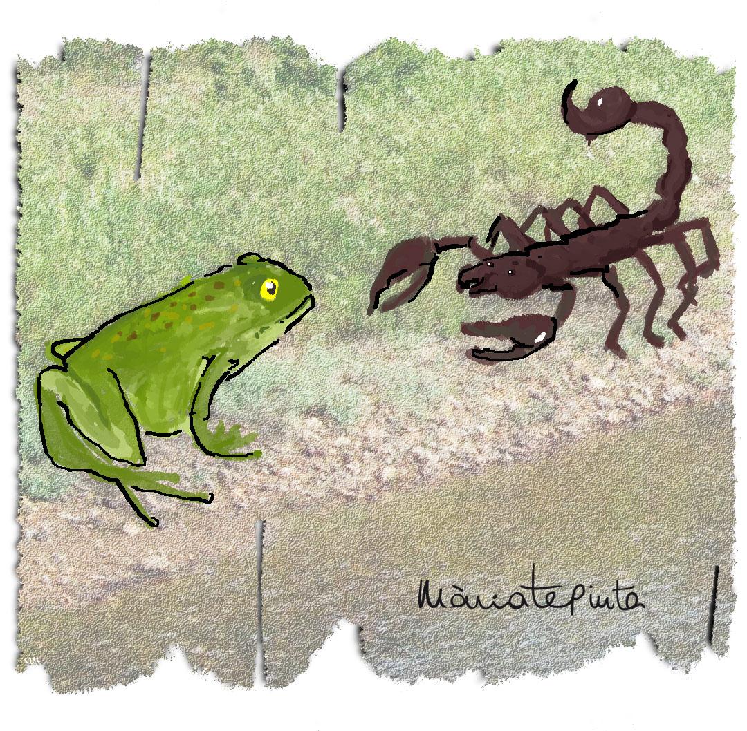Worksheet. Mria te pinta Fbulas II La rana y el escorpin