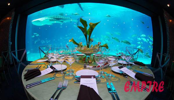 World 39 S Largest Aquarium Welcome To Bung Io Zone