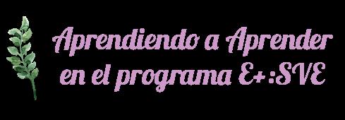 Aprendiendo a Aprender en el programa E+: SVE