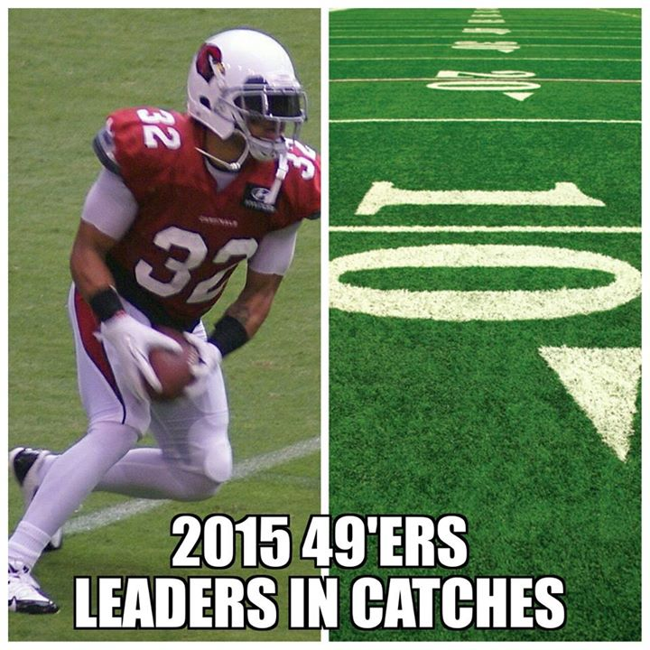 2015 49'ers leaders in catches