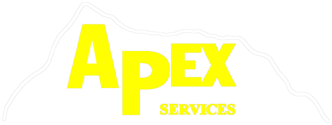a thesis is apex Apex leaders' sector thesis sprints provide our private equity clients with industry-specific advisors and intelligence ahead of your competition.