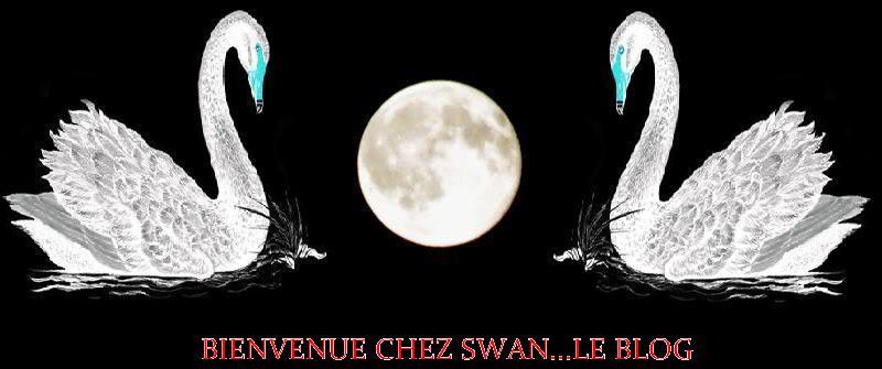 Bienvenue chez Swan...Le blog