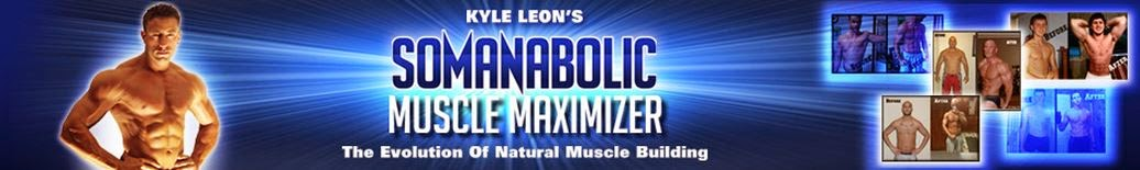 The Muscle Maximizer