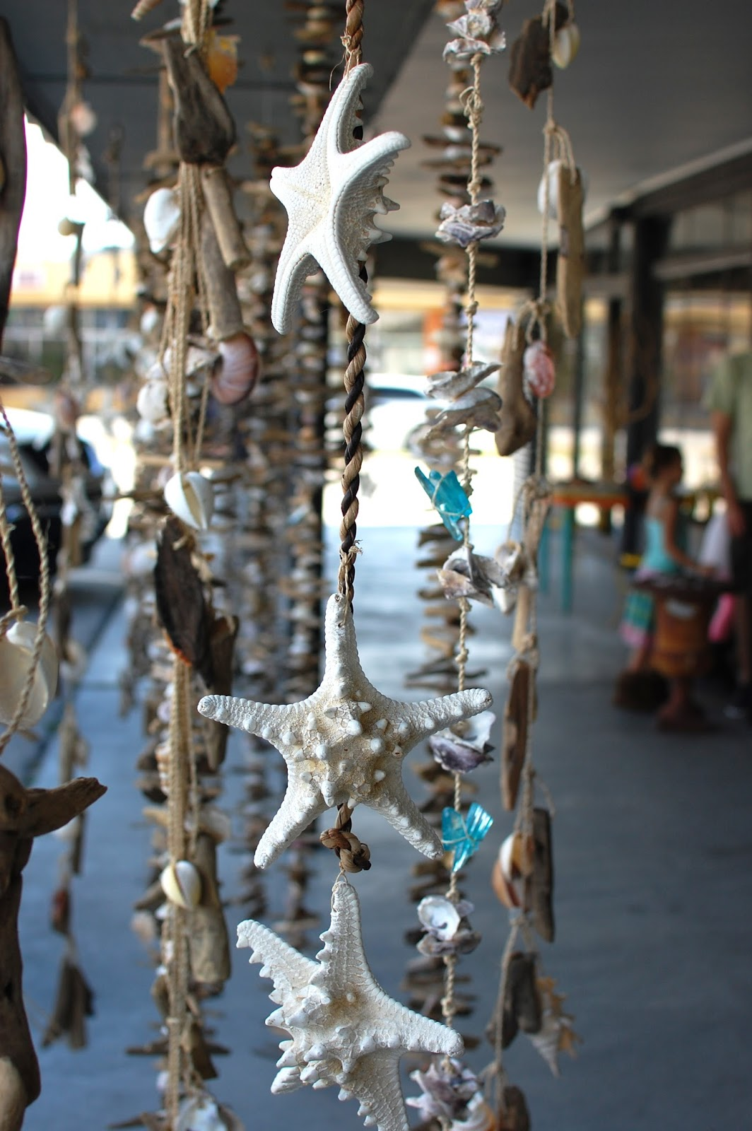 The Redolent Mermaid: Anna Maria Island: Sand Dollar Gift Shop